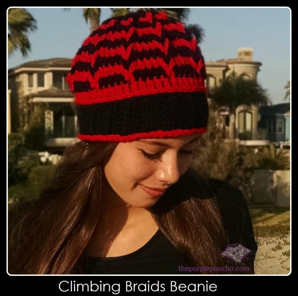 Climbing Braids Beanie Crochet Pattern by The Purple Poncho