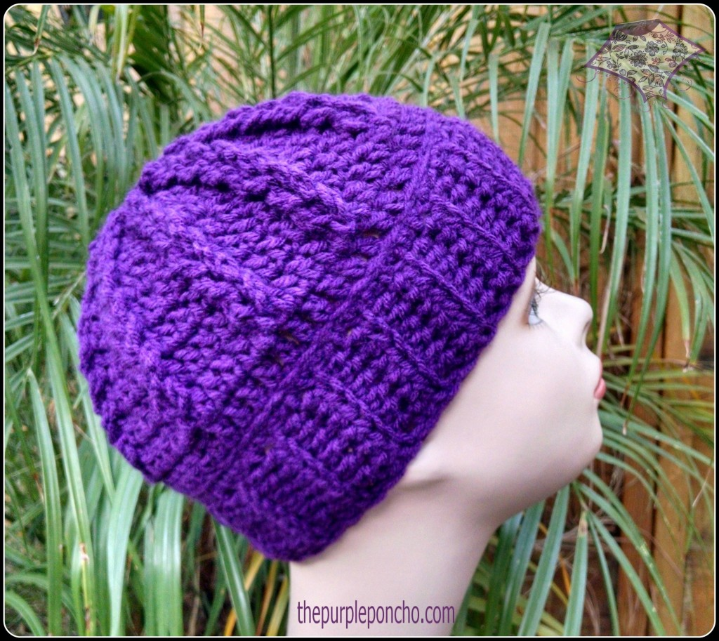 Crochet Hair Patterns For Beginners : Purple Climbing Braids Beanie crochet pattern by The Purple Poncho