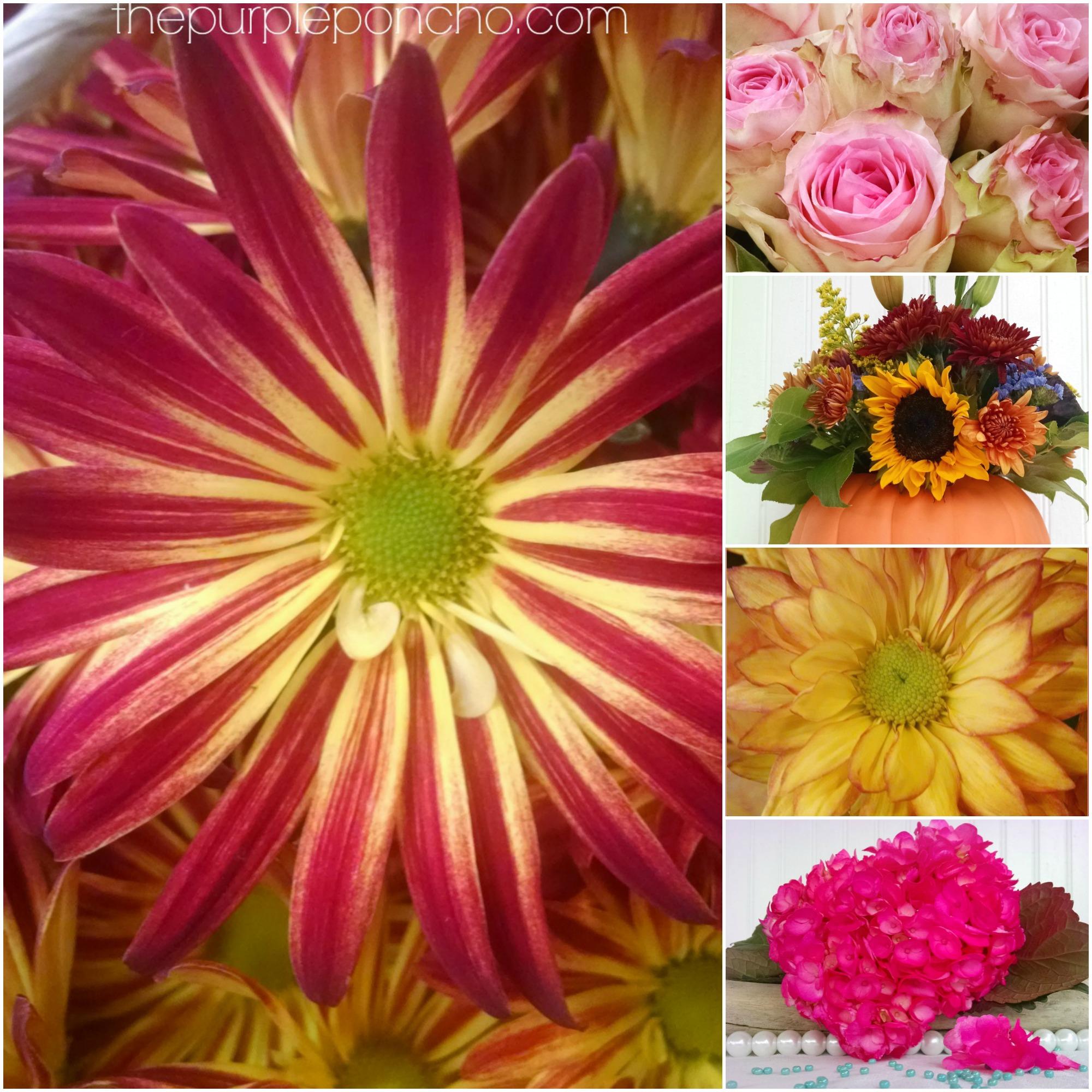How to Make Flower Petal Ladies How to Make Flower Petal Ladies new foto