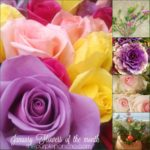 January Flowers Of The Month