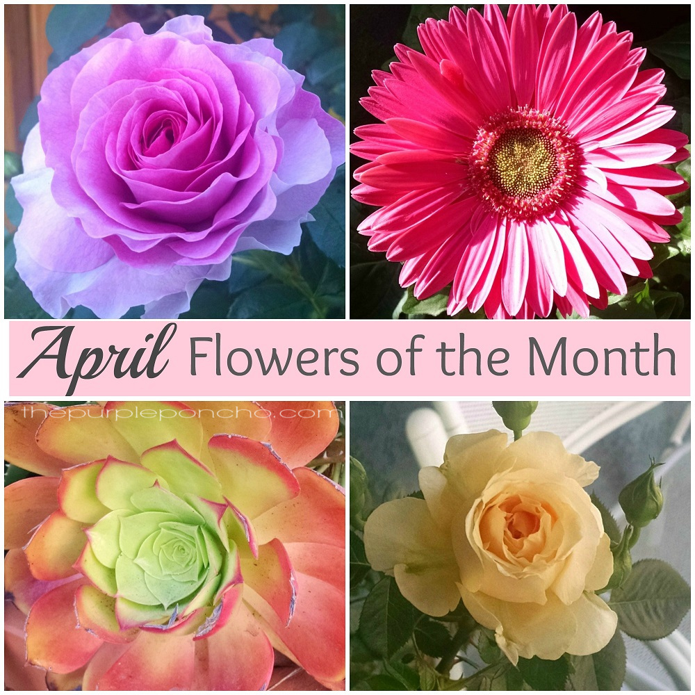 April Bouquets: April Flowers Of The Month